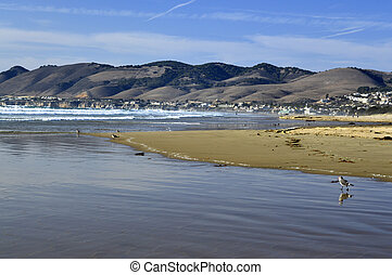 Pismo Beach - Pismo beach sand water pacific ocean on the...