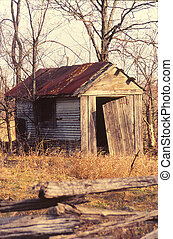 Old Shack - old rundown shack with a rusty tin roof and...