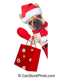 christmas dog - santa claus christmas dog isolated on white...