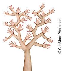 mãos, árvore