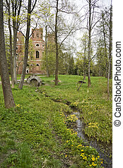Spring-well with yellow flowers and ruins behind