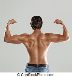 Torso,  muscular, hombre