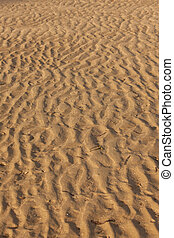 Beach sand texture wave pattern