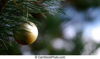 Christmas decoration on coniferous - Christmas time,...
