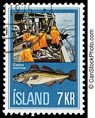 Icland stamp - ICELAND - CIRCA 1971: A stamp printed in...