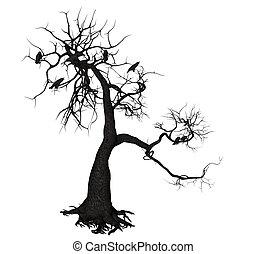 cuervo, árbol,