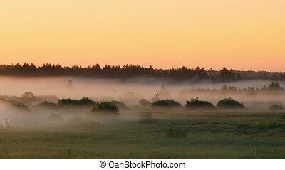 Moving fog at dawn