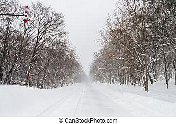 Blizzard in Shiretoko, Hokkaido. - Blizzard in Shiretoko,...