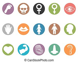 human feature round buttons icons - isolated human feature...