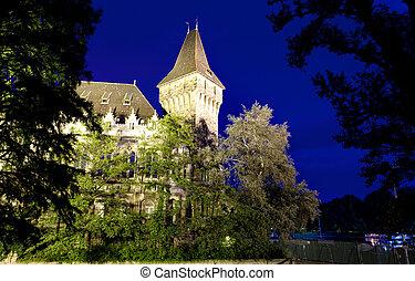 Historical building in Budapest - Vajdahunyad Castle
