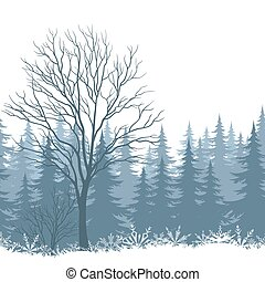 Winter landscape with trees and snow - Winter woodland...
