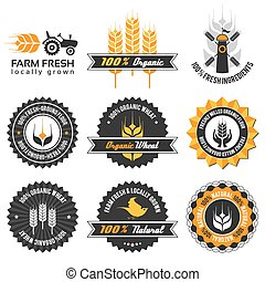 wheat production label set with differently varied modern,...