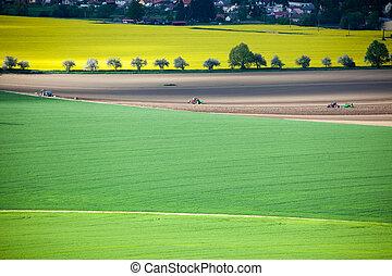 Tractor on field of rapeseeds at region Liptov, Slovakia