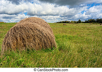 Large Hay Bale - Hay Bales in Field Waiting to be Picked Up