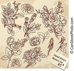 Set of Vintage Realistic graphic flowers - roses - hand...