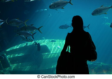 Aquarium - Lady standing in front of aquarium fish tank