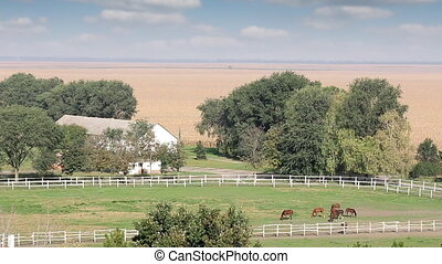 farm with horses rural landscape