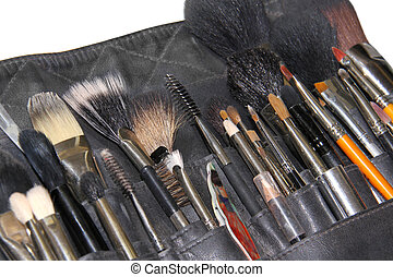 Professional makeup brushes in case