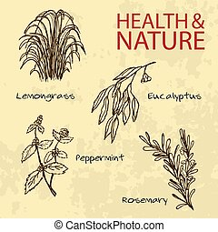 Handdrawn Illustration - Health and Nature Set. Collection...