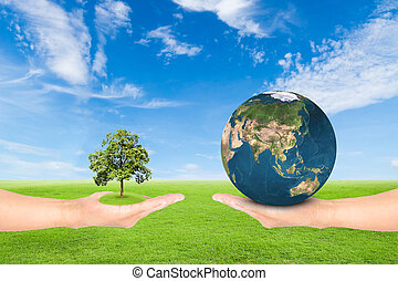 hand holding tree and earth - Green Earth concept,hand...