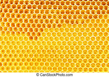 natural honey in honeycomb background - natural bee honey in...