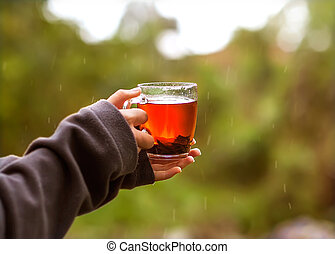 cup of tea in hand in the rain