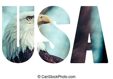 Word USA with bald eagle.