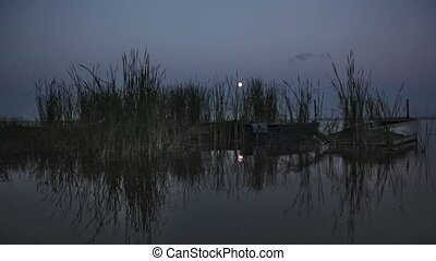 Boats on water among canes in a full moon, a night landscape