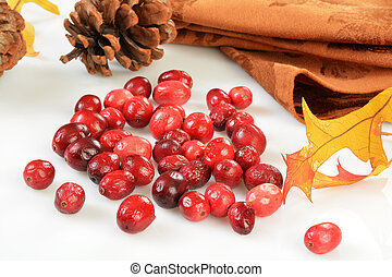 Freeze dried cranberries on a white counter top with autumn...