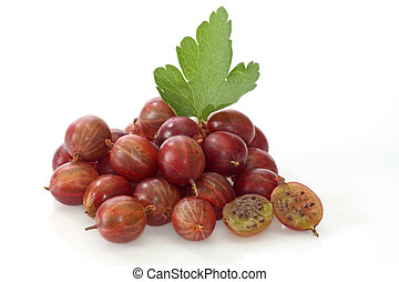 Gooseberry - Fresh Berries of gooseberry on a bright...