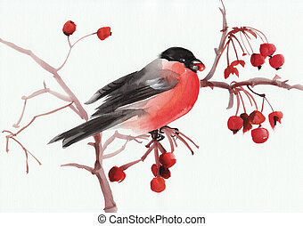 Bullfinch on a branch - Watercolor original painting of a...