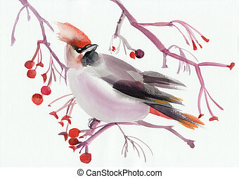 Waxwing on a branch - Watercolor original painting of a...