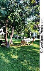 hammock in the park