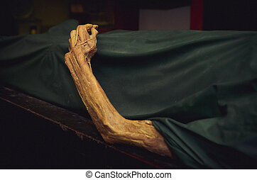 The dead body. Focus on hand decay.