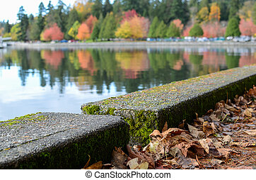 Autumn seawall - Fall on Vancouver's seawall with leaves on...