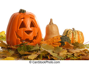 colorful halloween pumpkin with autumn leaves and gourd