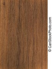 Texture walnut