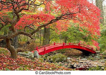 Japanese Garden - Scenic autumn picture of Japanese Garden...