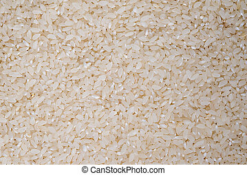 food background of white round rice closeup