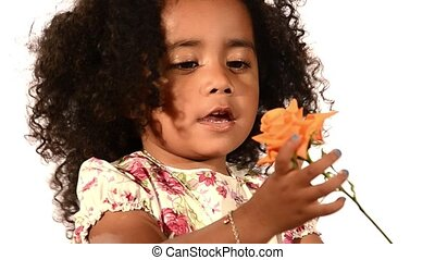 a brazilian child and a rose - funny mixed race black and...
