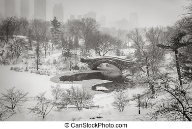 Winter scene in New York City: Snowstorm in Central Park -...