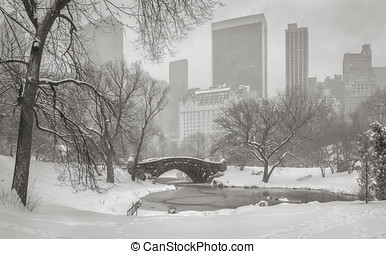 View of the Pond, Gapstow Bridge and Manhattan skyscrapers...