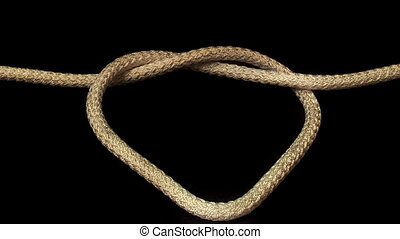 Tied Knot, - tied the rope and pulled the knot