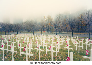 Crosses in the Mist - Remembrance Day field of crosses in...