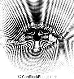 Vector eye - Vector human eye in engraved style. Eps8. CMYK....
