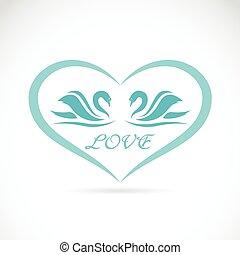 cuore, immagine, due, forma, vettore, cigni