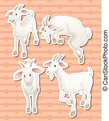 Goat - illustration of a set of goats