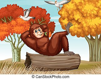 Orangutan - illustration of an orangutan relaxing on a log