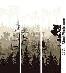 Banners of coniferous wood. - Set vector vertical banners of...