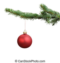 red satin glass ball hanging on christmas branch, isolated...
